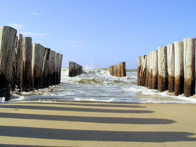 Strand met wilde zee